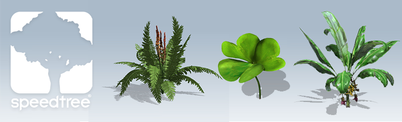 Banana Plant Shamrock And Cinnamon Fern For Games Speedtree