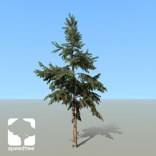 Spruce_White_Desktop_2_green