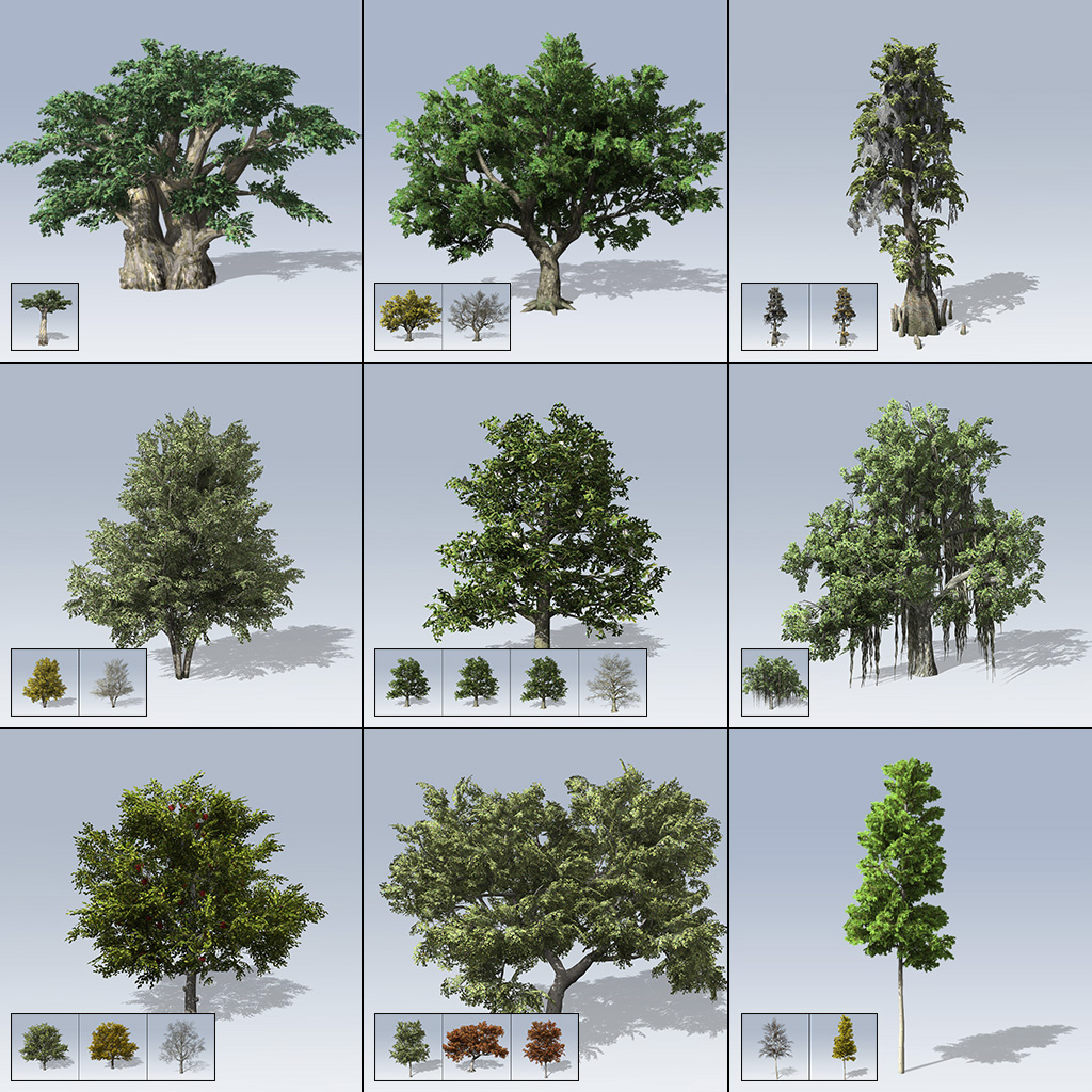 Desktop Tree Package 2