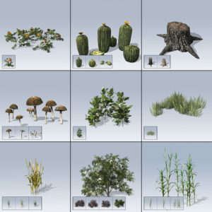 Desktop Ground Cover Package