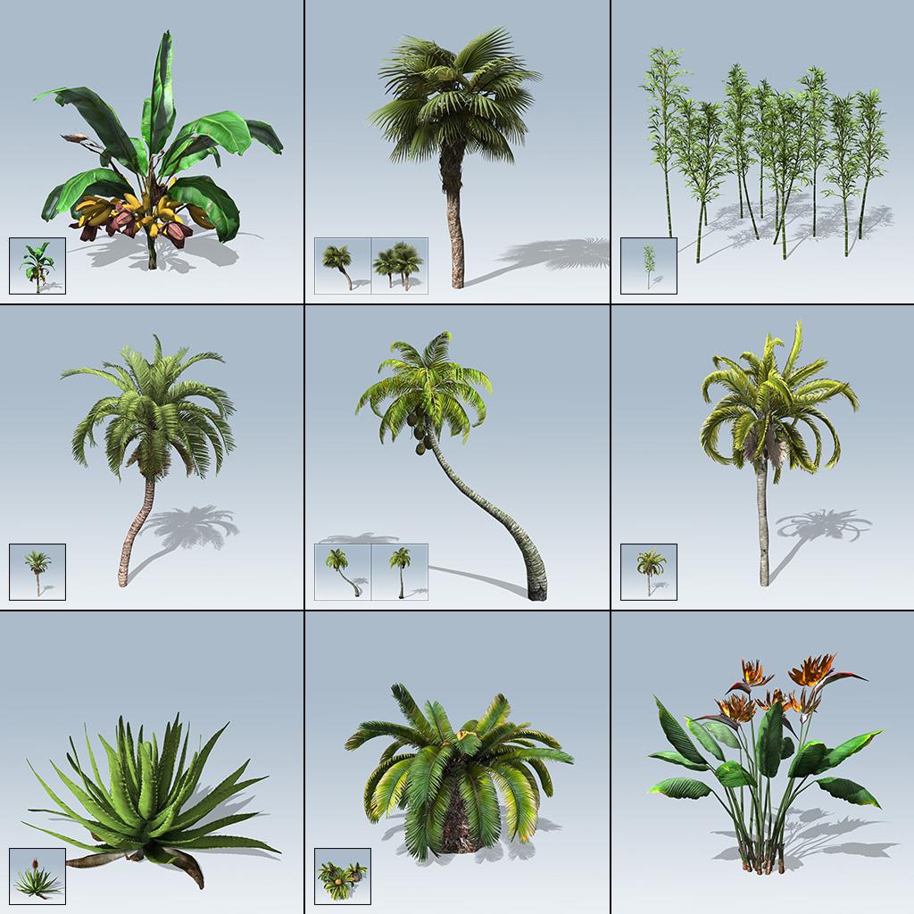 Desktop Palm & Tropical Package (Games v7)