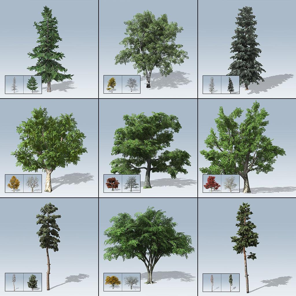 Desktop Tree Package