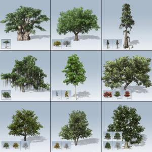 Hero Tree Package 2