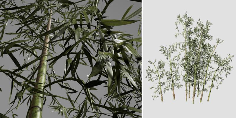Bamboo: Desktop (Blue Fountain)
