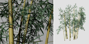 Bamboo: Hero (Yellow Groove)
