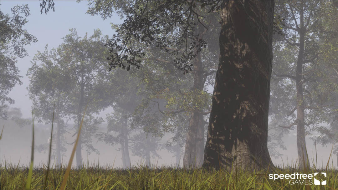 The State of the SpeedTree/Unity HDRP Pipeline – SpeedTree